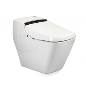 VOVO princes all in one turnkey washlet bidet shower