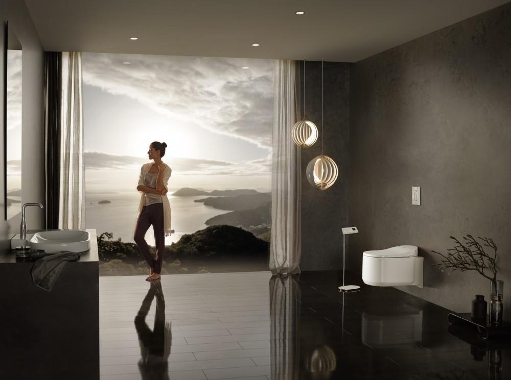 grohe sensia areana spalet shower toilet bidet seat washlet