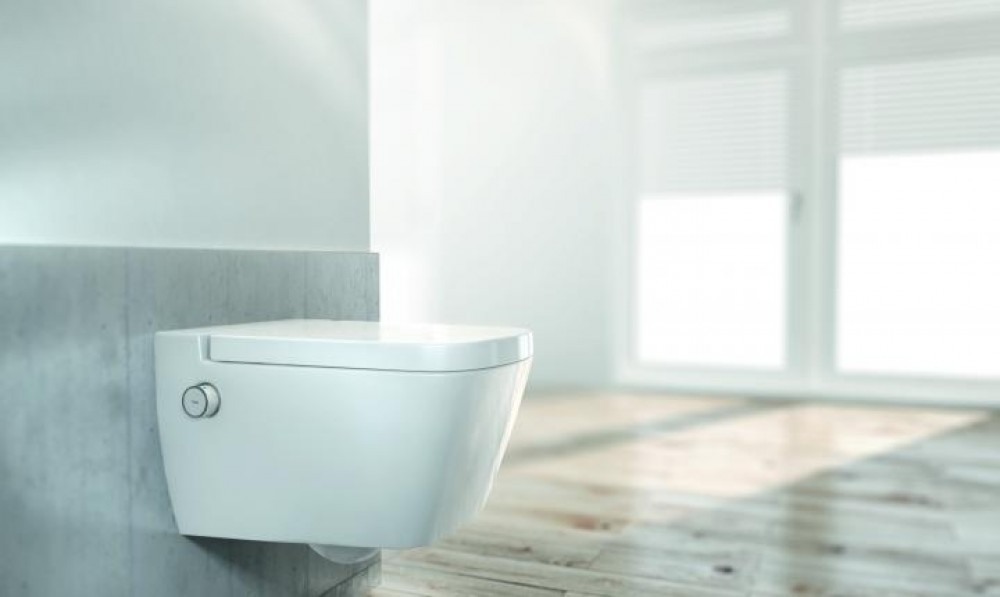 hot and cold non -electric toilet shower bidet seat tooaleta