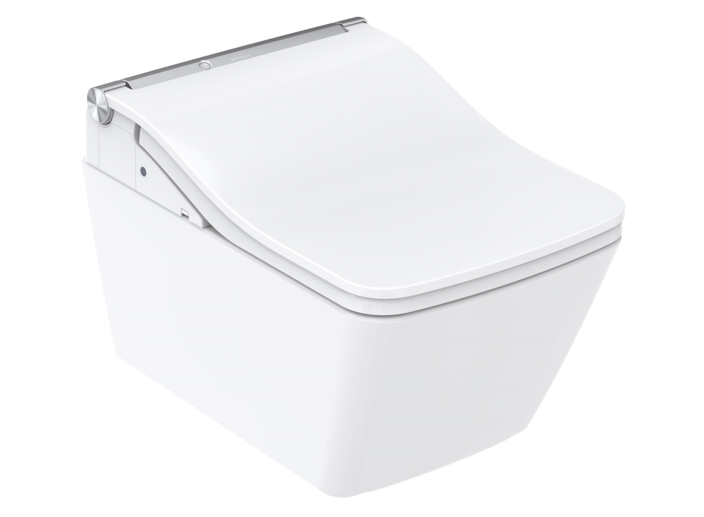 toto washlet sw Clean Case