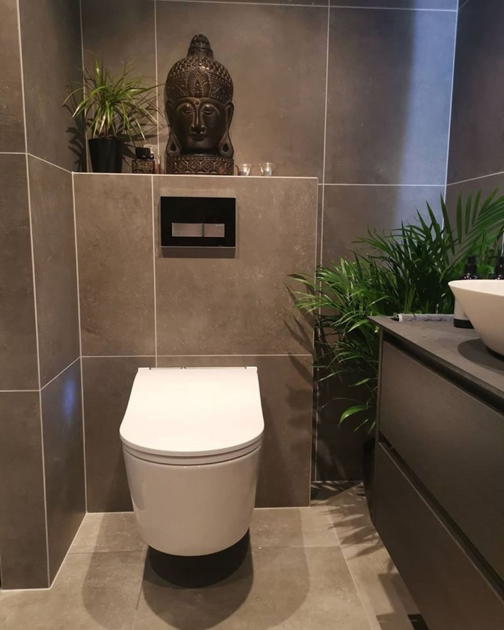 TOTO Washlet RW - Geberit Duofix UP320, Geberit Sigma 50 Installation