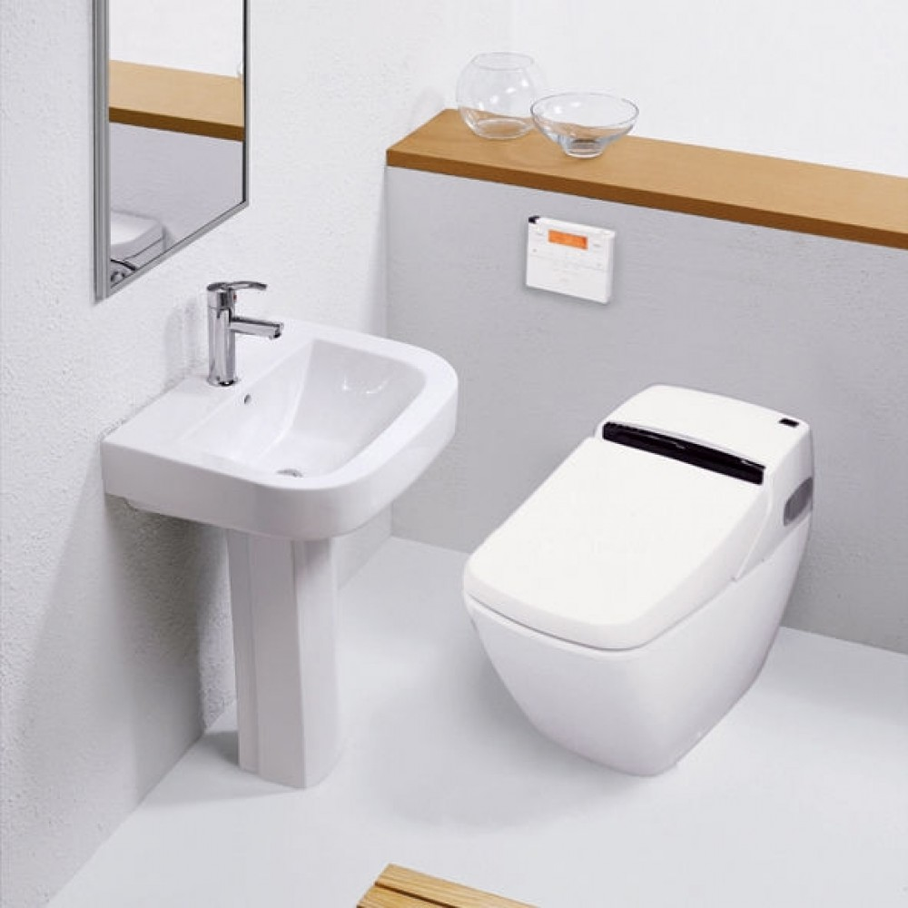 shower toilet bidet and flushing