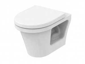 toto cf no rim, rimless direct flush